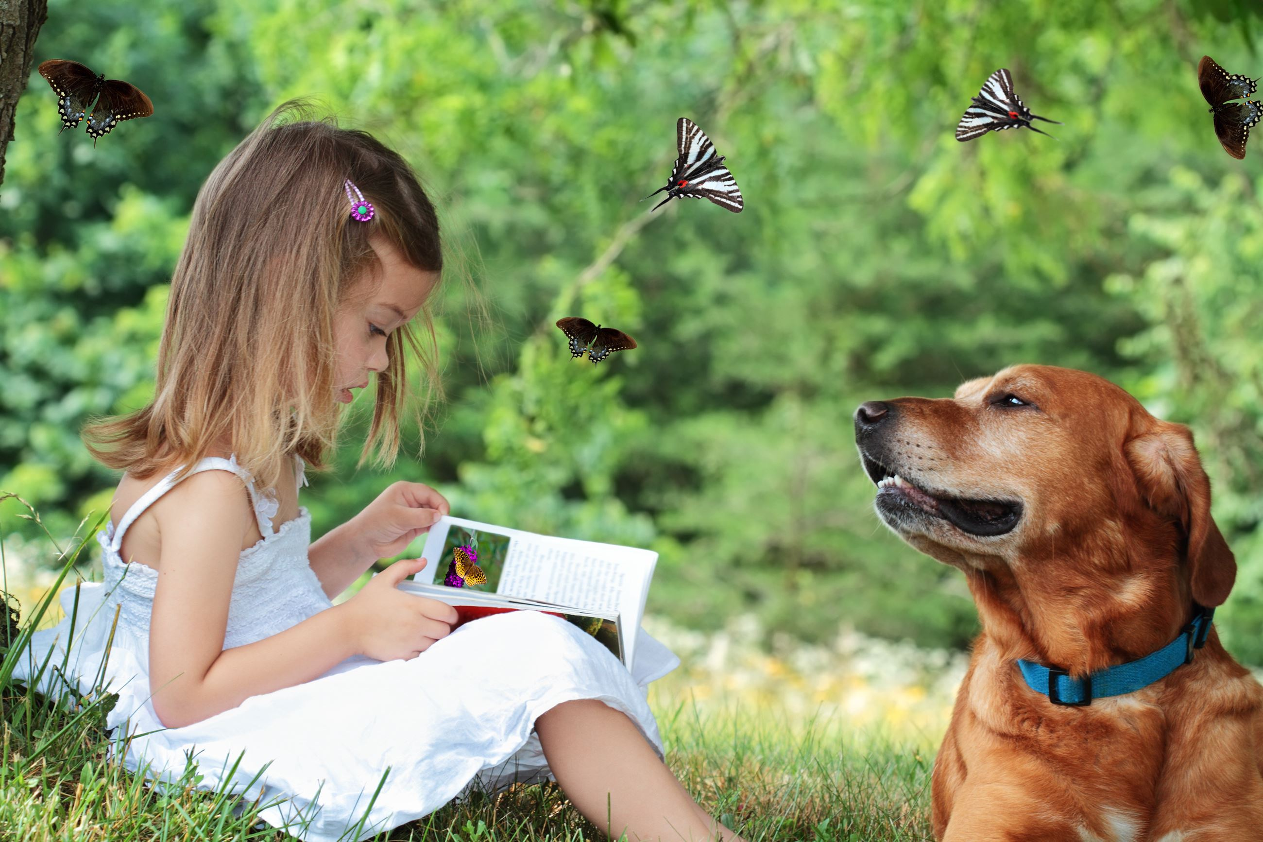 readingtoadog